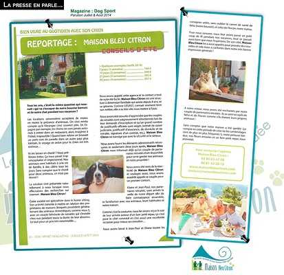 Faire garder ses animaux chez soi : le bien-être idéal pour ses compagnons ! article