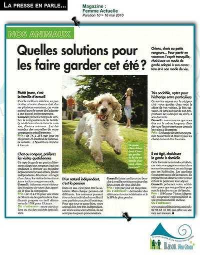 Home sitting : la solution de garde idéale pour ses animaux ! article